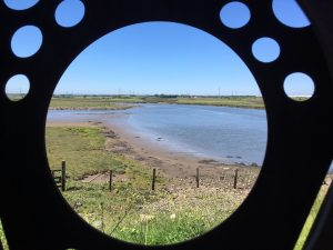 A view from a round window looking onto a nature reserve