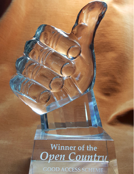 A glass 'Thumbs up' trophy